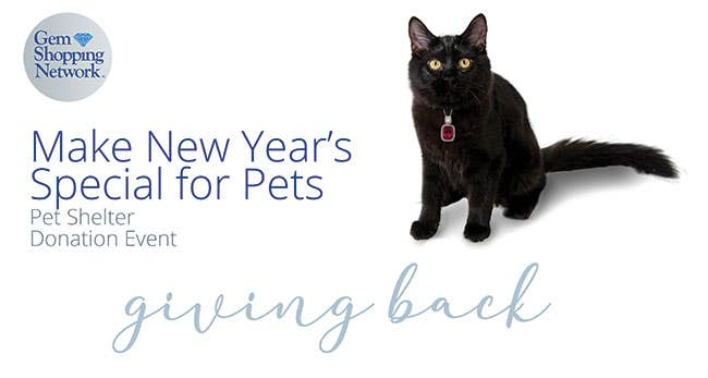 Share our posts and we will donate to two Atlanta Area Pet Shelters
